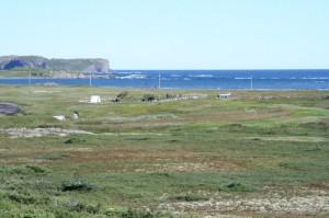 Isolated Coastline