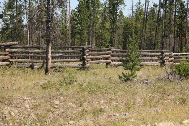 Pole Snake fence.