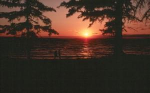 PANP Sunset