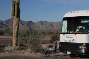 Desert Relaxation